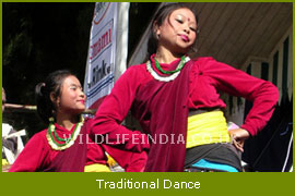 Traditional Dance of Monastry Festival's
